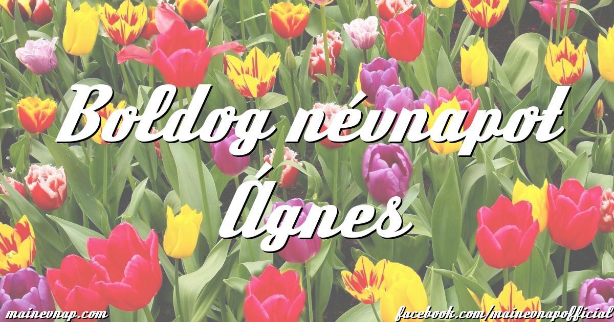ágnes névnap képek Ágnes névnapja ágnes névnap képek