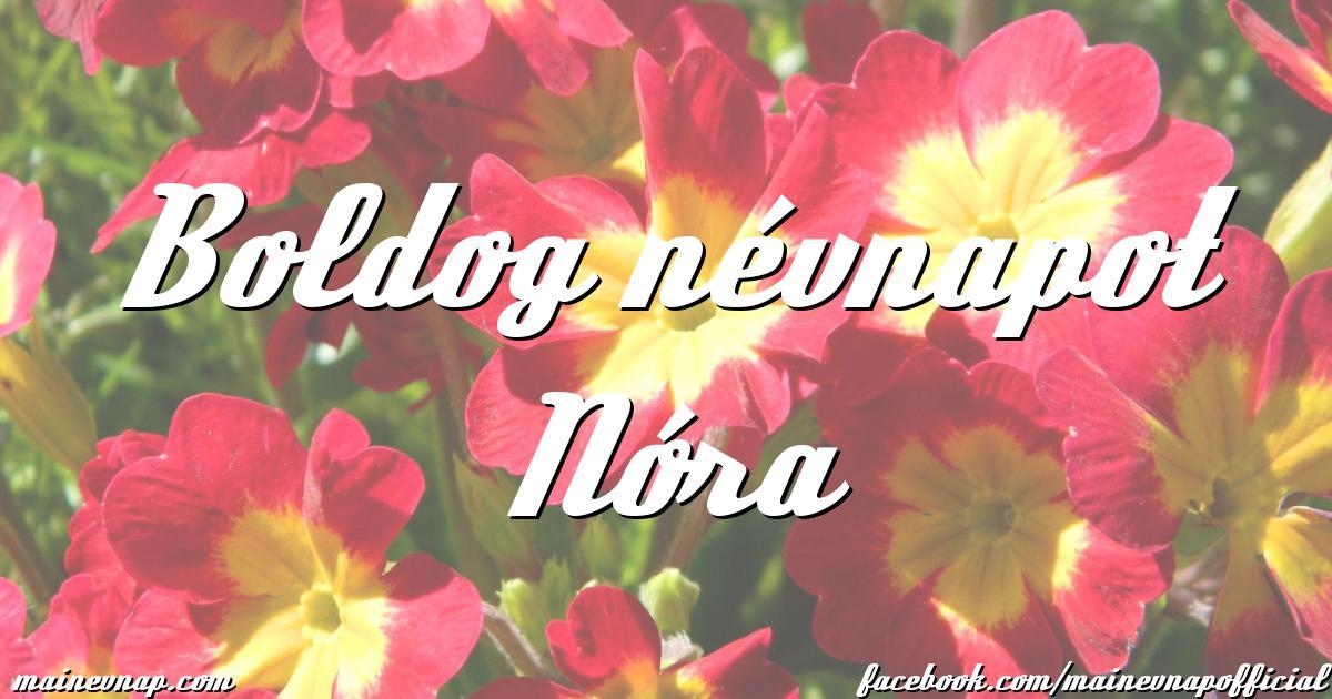 boldog névnapot nóra Boldog névnapot Nóra boldog névnapot nóra