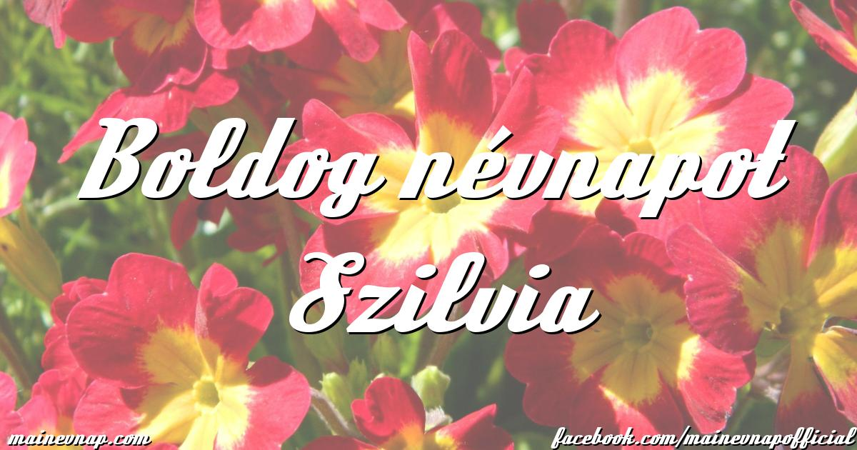 boldog névnapot szilvia Boldog névnapot Szilvia boldog névnapot szilvia